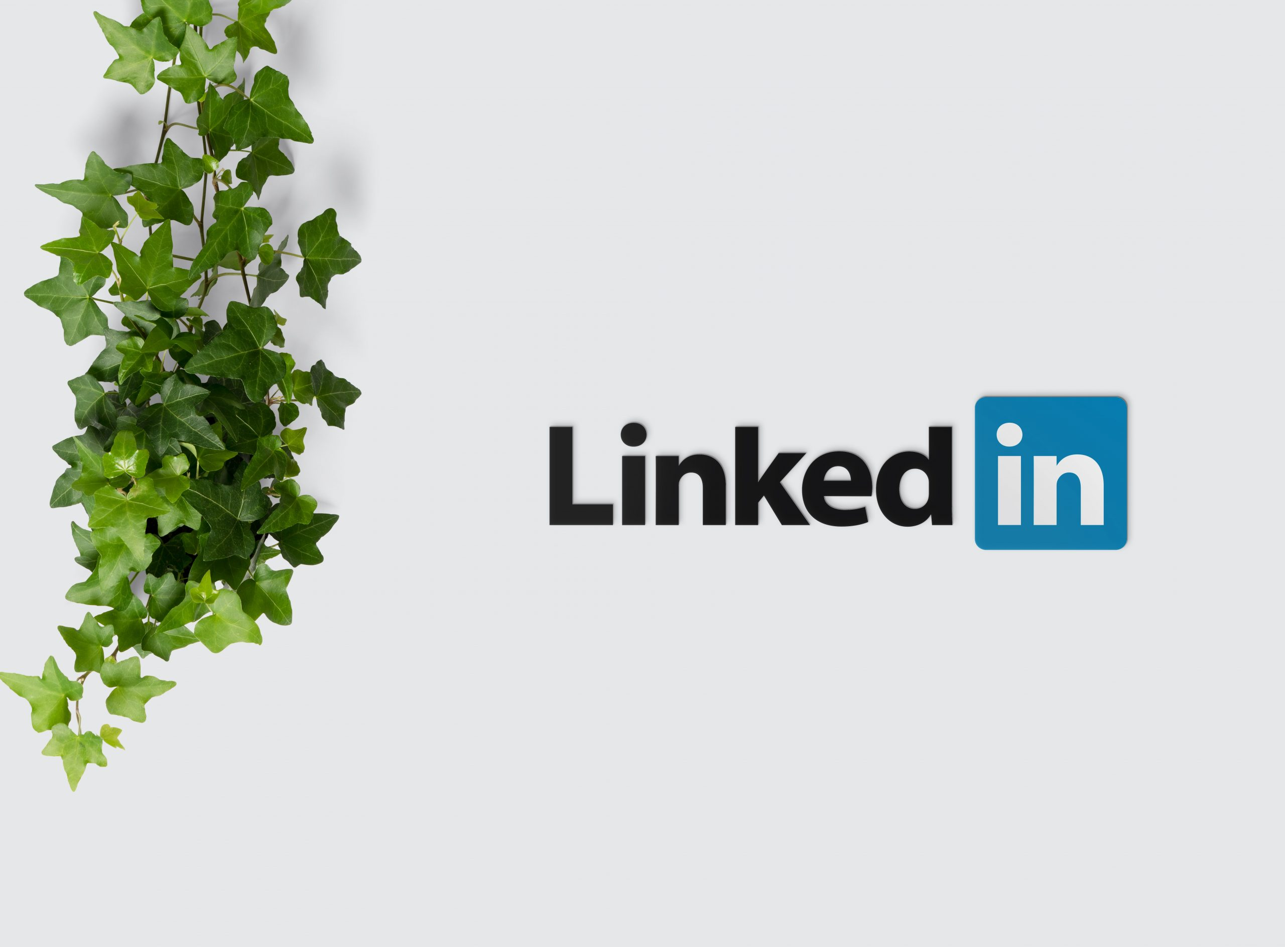 LinkedIn Social Selling – Does It Work and How To Get Results